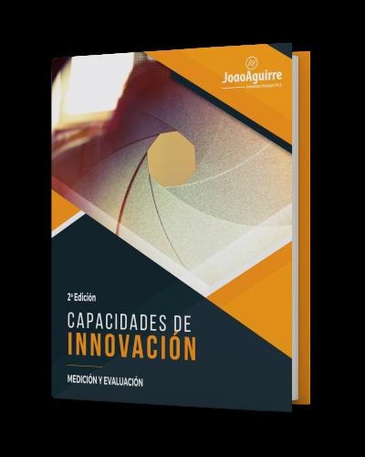 CARATULA - CAPACIDADES DE INNOVACIÓN - JOAO AGUIRRE