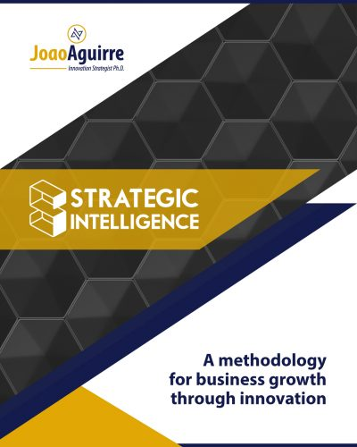 STRATEGIC INTELLIGENCE - JOAO AGUIRRE Methodology to growth your business