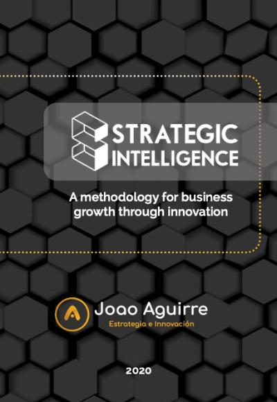 Strategic Intellignece a methodology book